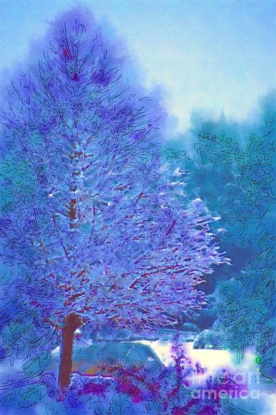 Photograph - Blue Snow Scene by Donna Bentley