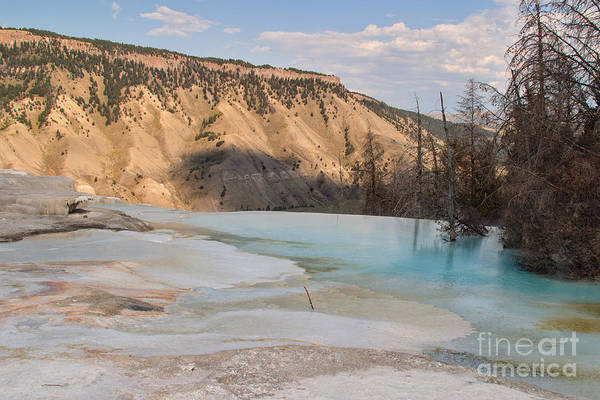 Photograph - Blue Spring by Charles Kozierok