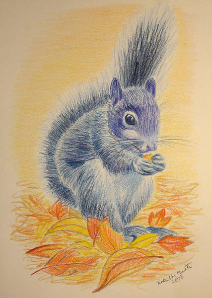 Wall Art - Drawing - Blue Squirrel by Katelijn Van Munster