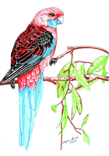 New Leaf Mixed Media - Blue Tail Parrot - Green Day by Dwayne Hamilton