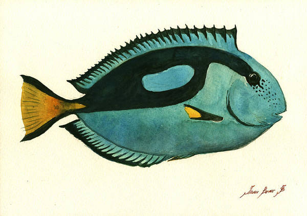 Pacific Wall Art - Painting - Blue Tang Fish by Juan Bosco