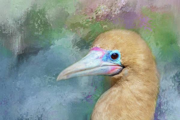 Boobies Digital Art - Blue Textured Bird by Terry Davis