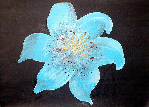 Tigerlily Wall Art - Painting - Blue Tiger Lily by Sandy Wager