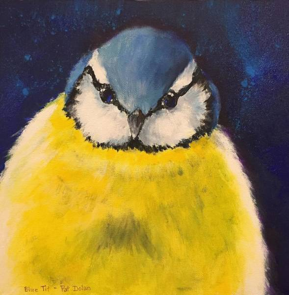 Painting - Blue Tit by Pat Dolan