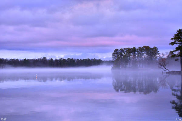 Photograph - Blue Twilight by Lisa Wooten