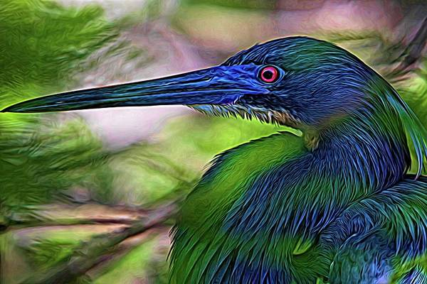 Photograph - Blue Under Greens by Alice Gipson