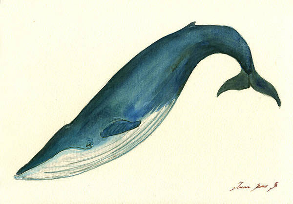 Right Painting - Blue Whale Painting by Juan  Bosco
