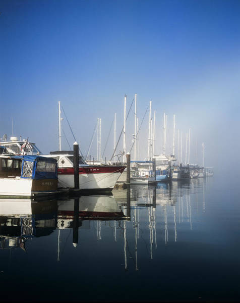 Photograph - Blue Winchester Bay by Robert Potts