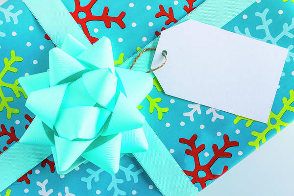 Photograph - Blue Wrapped Christmas Present by Teri Virbickis