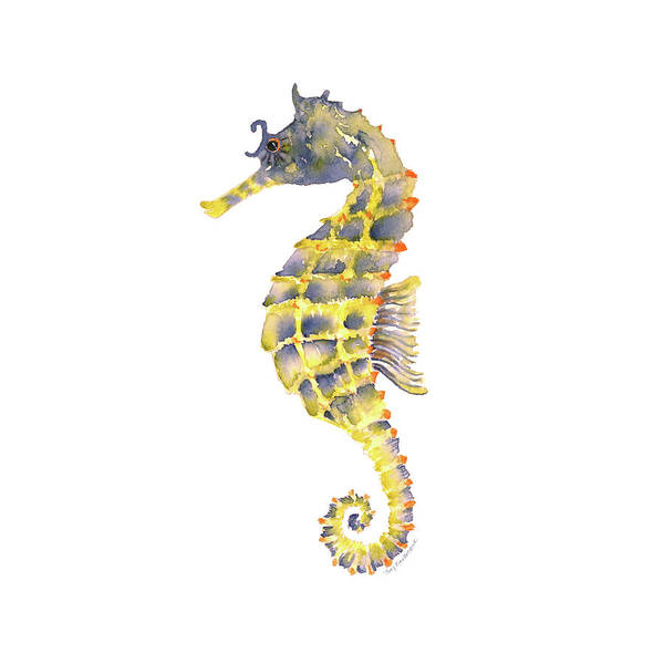 Painting - Blue Yellow Seahorse - Square by Amy Kirkpatrick