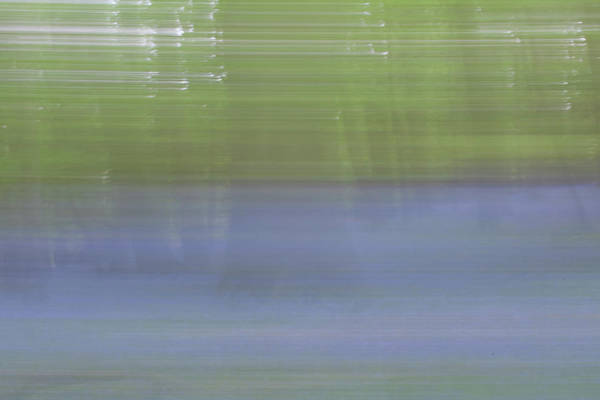 Photograph - Bluebell Woods Abstract IIi by Helen Northcott