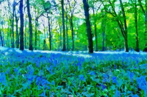 Woodland Mixed Media - Bluebells In Woodland by Scott Carruthers