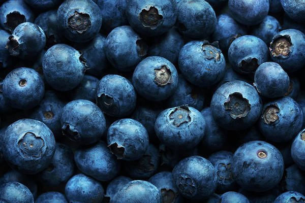 Ripe Photograph - Blueberries Background Close-up by Johan Swanepoel