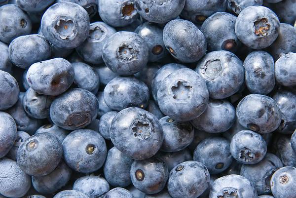 Fruit Photograph - Blueberries by Jaroslaw Grudzinski