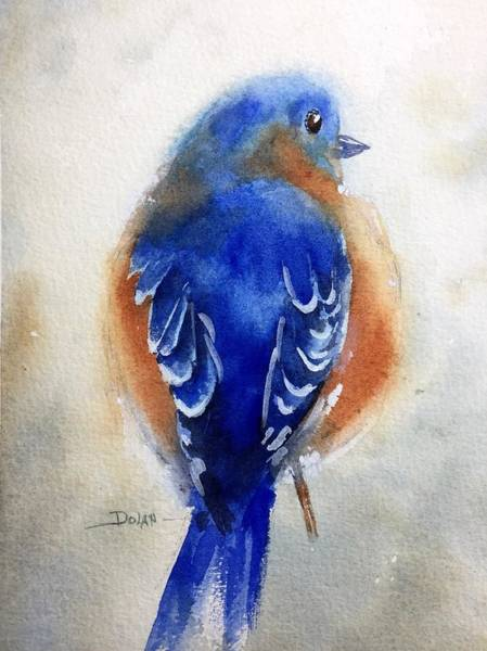 Painting - Bluebird #1 by Pat Dolan