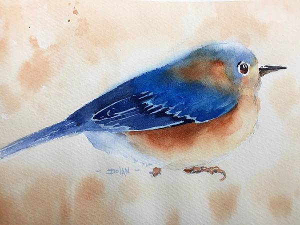 Painting - Bluebird #5 by Pat Dolan