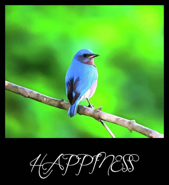 Happiness Mixed Media - Bluebird Happiness by Dan Sproul
