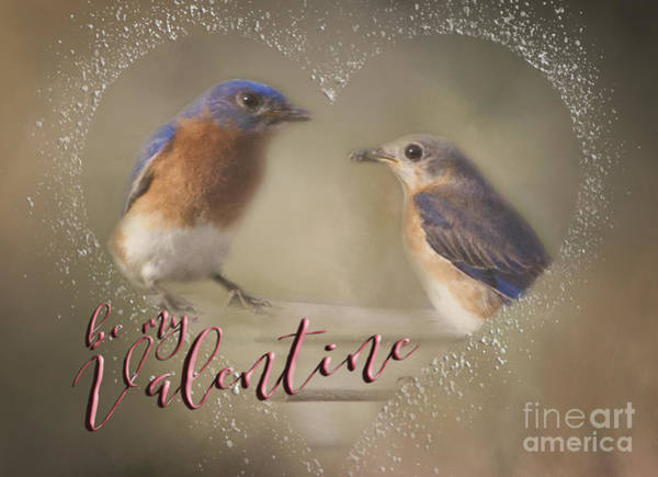 Photograph - Bluebird Love by Pam  Holdsworth