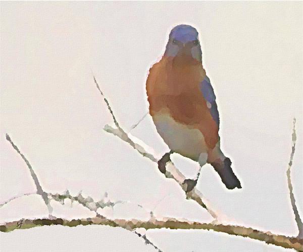 Digital Art - Bluebird Stare  by Shelli Fitzpatrick