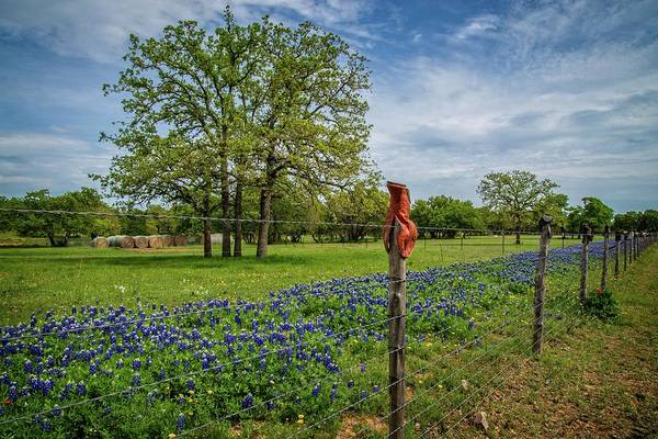 Photograph - Bluebonnets And Boots On The Willow City Loop by Lynn Bauer