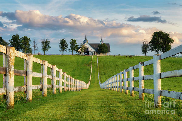 Wall Art - Photograph - Bluegrass Barn by Anthony Heflin