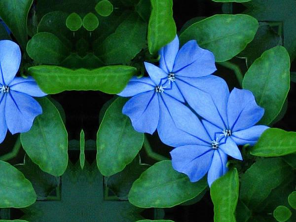 Bluegreencomp 2006 Art Print