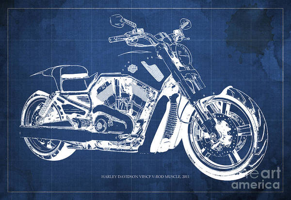 Harley Davidson Painting - Blueprint 2011 Harley-davidson Vrscf V-rod Muscle - Blue Background by Drawspots Illustrations
