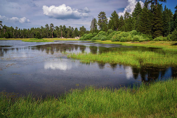 Photograph - Bluff Lake Reflections by Rick Strobaugh