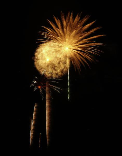 Photograph - Blurred Fireworks by Elaine Malott