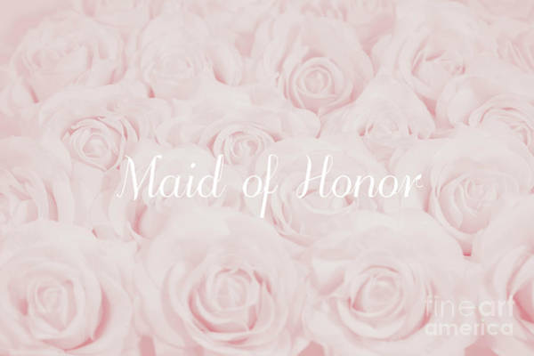 Wall Art - Photograph - Blush Pink Maid Of Honor by Lucid Mood