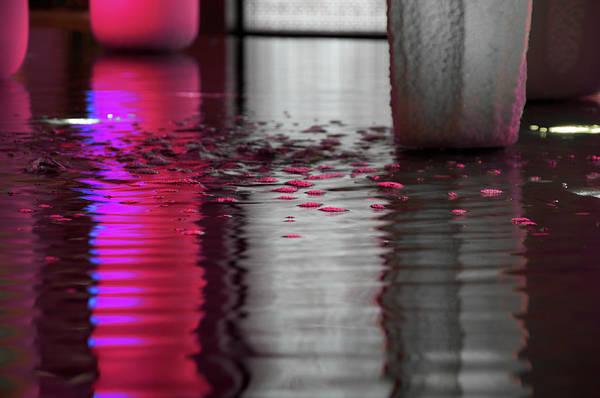 Wall Art - Photograph - Blushing Bubbles by Nancy Morrison