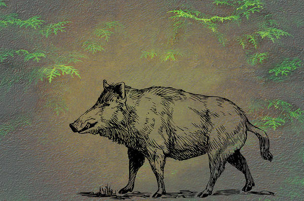 Mixed Media - Boar by Movie Poster Prints