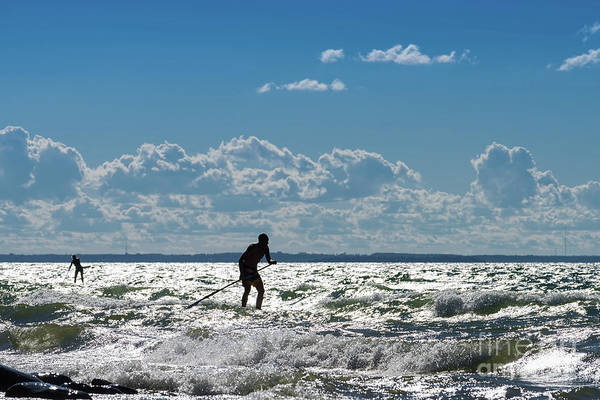 Photograph - Board Paddlers by Les Palenik