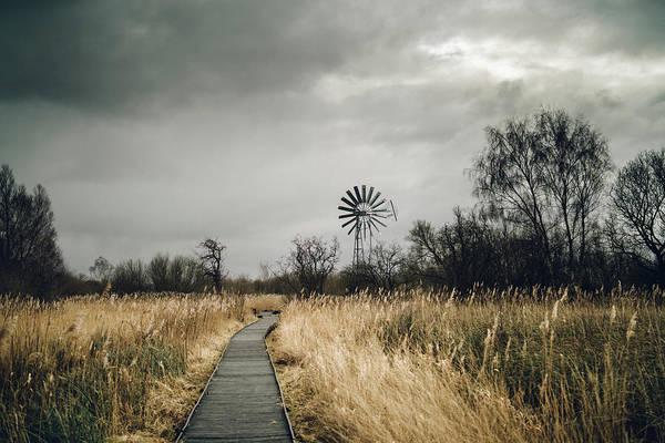 Photograph - Boardwalk And Windpump by James Billings