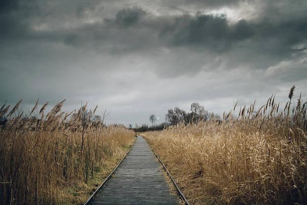 Photograph - Boardwalk by James Billings