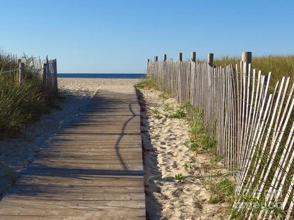Photograph - Boardwalk On The Cape by Donna Cavanaugh