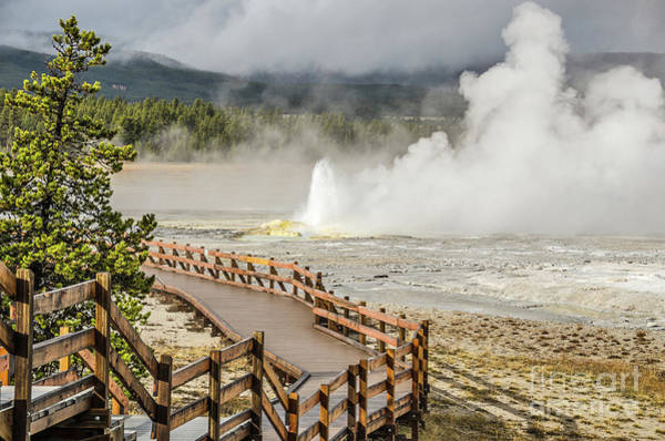 Photograph - Boardwalk Overlooking Spasm Geyser by Sue Smith