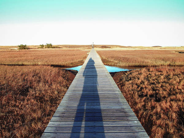 Photograph - Boardwalk Shadow by Christopher Brown