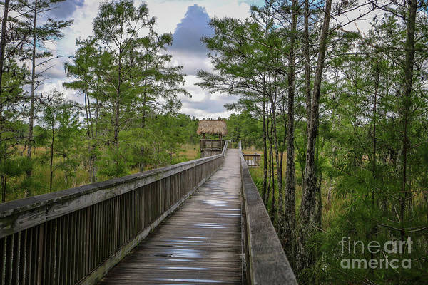Photograph - Boardwalk To Tiki Hut by Tom Claud
