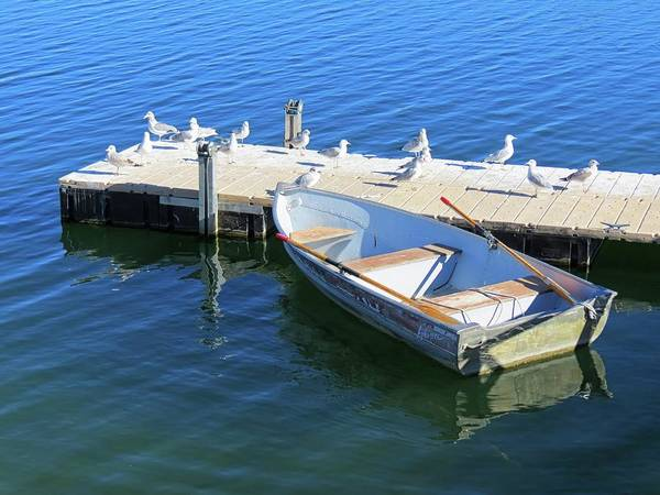 Arapahoe County Wall Art - Photograph - Boat Dock by Connor Beekman
