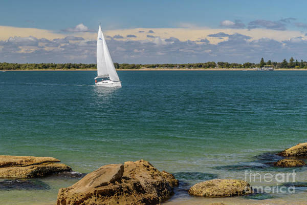 Photograph -  Boat On Pittwater by Werner Padarin