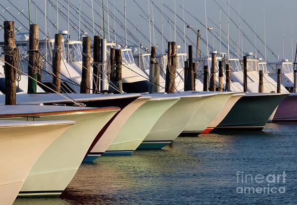 Photograph - Boating by Jill Lang