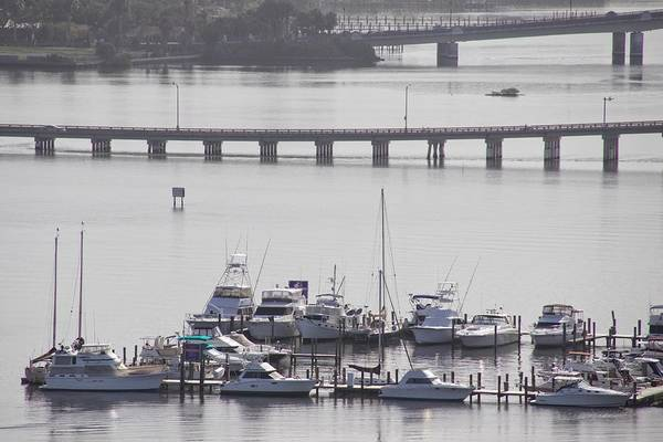 Photograph - Boats And Bridges by Alice Gipson