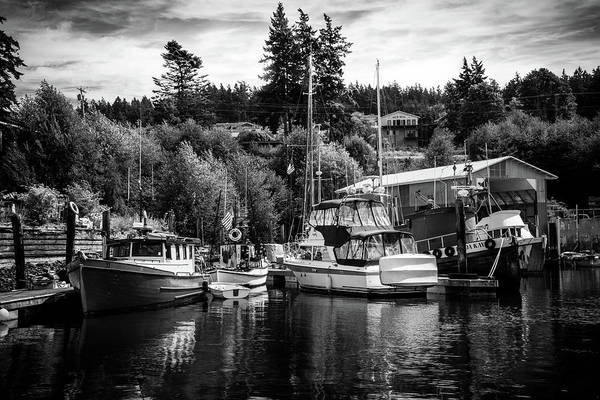 Photograph - Boats At Lovric's Sea Craft, Washington by TL Mair