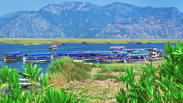 Photograph - Boats In The Dalyan Delta by Sun Travels