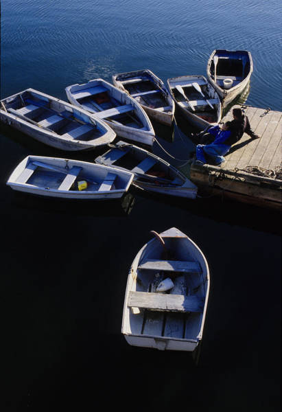 Photograph - Boats Moored At Dock by Steve Somerville