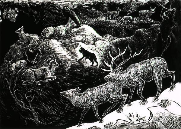 Elk Mountain Drawing - Bobcat Among Elk by Dawn Senior-Trask