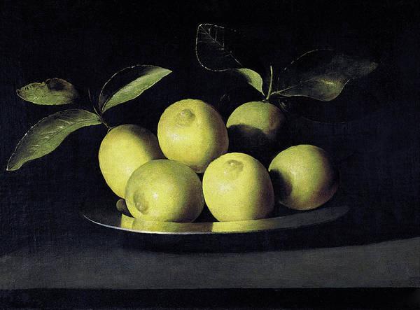 Painting - Bodegon De Limones by Juan de Zurbaran