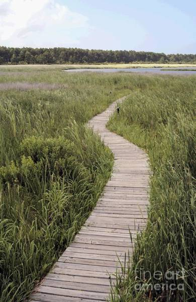 Digital Art - Bodie Island Boardwalk On The Outer Banks With Watercolor Effect by William Kuta