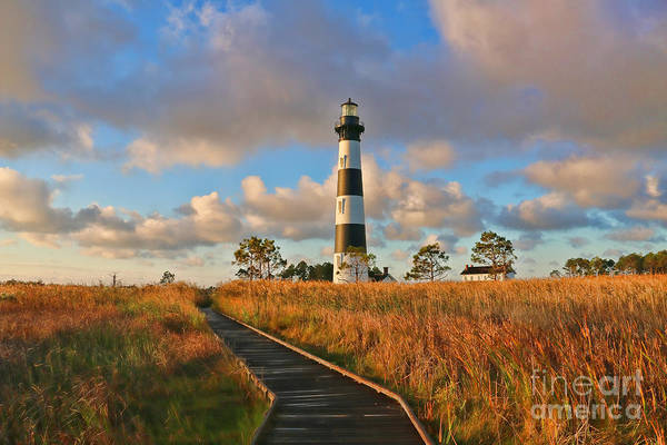 Roanoke Island Wall Art - Photograph - Bodie Island Lighthouse  3098 by Jack Schultz